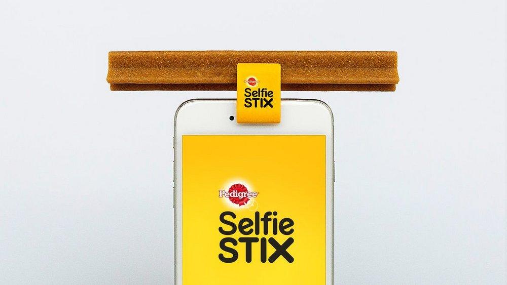 SelfieStix2