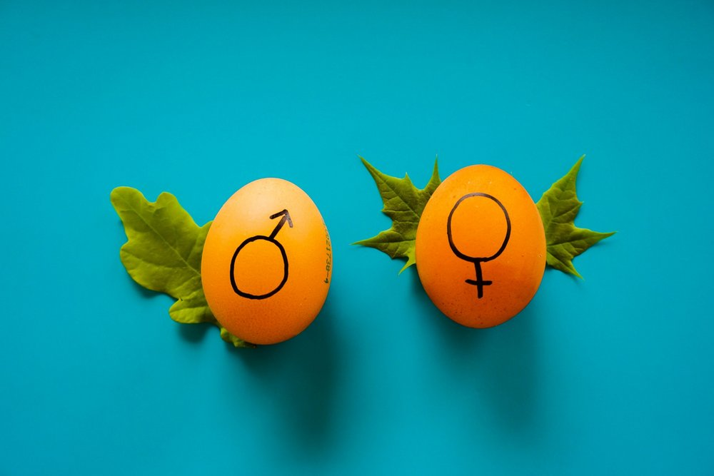 Body image for Strategist's Digest: Do people prefer feminine brand names?