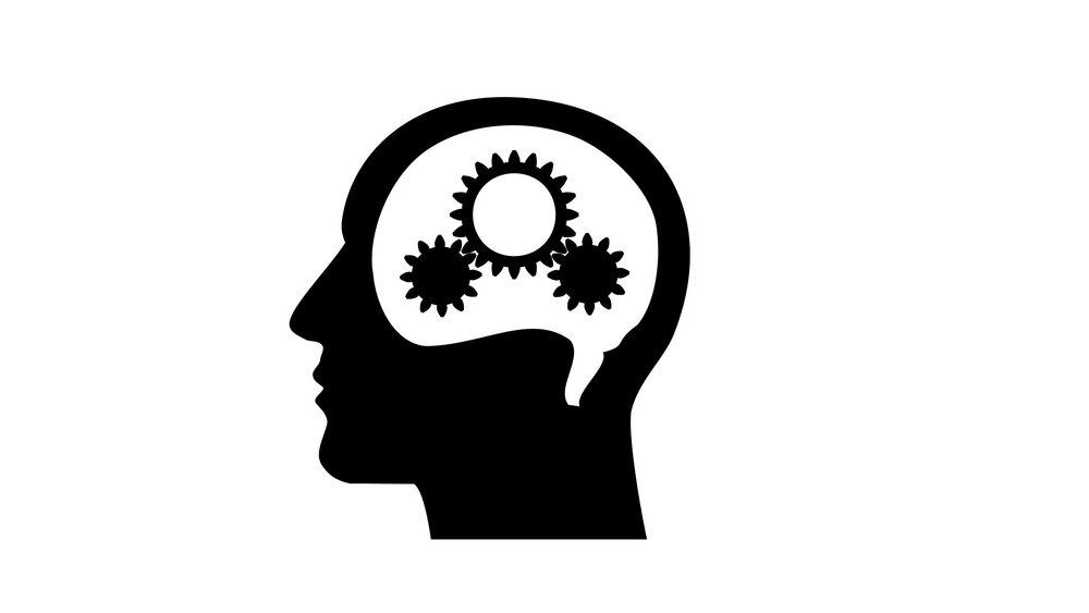brain 2