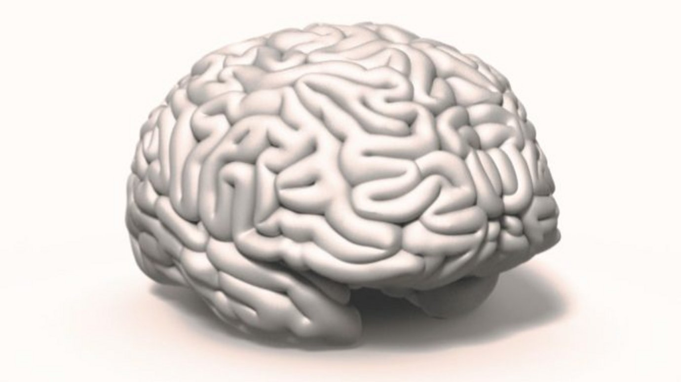 Header image for article Why left-brain thinking is killing advertising effectiveness