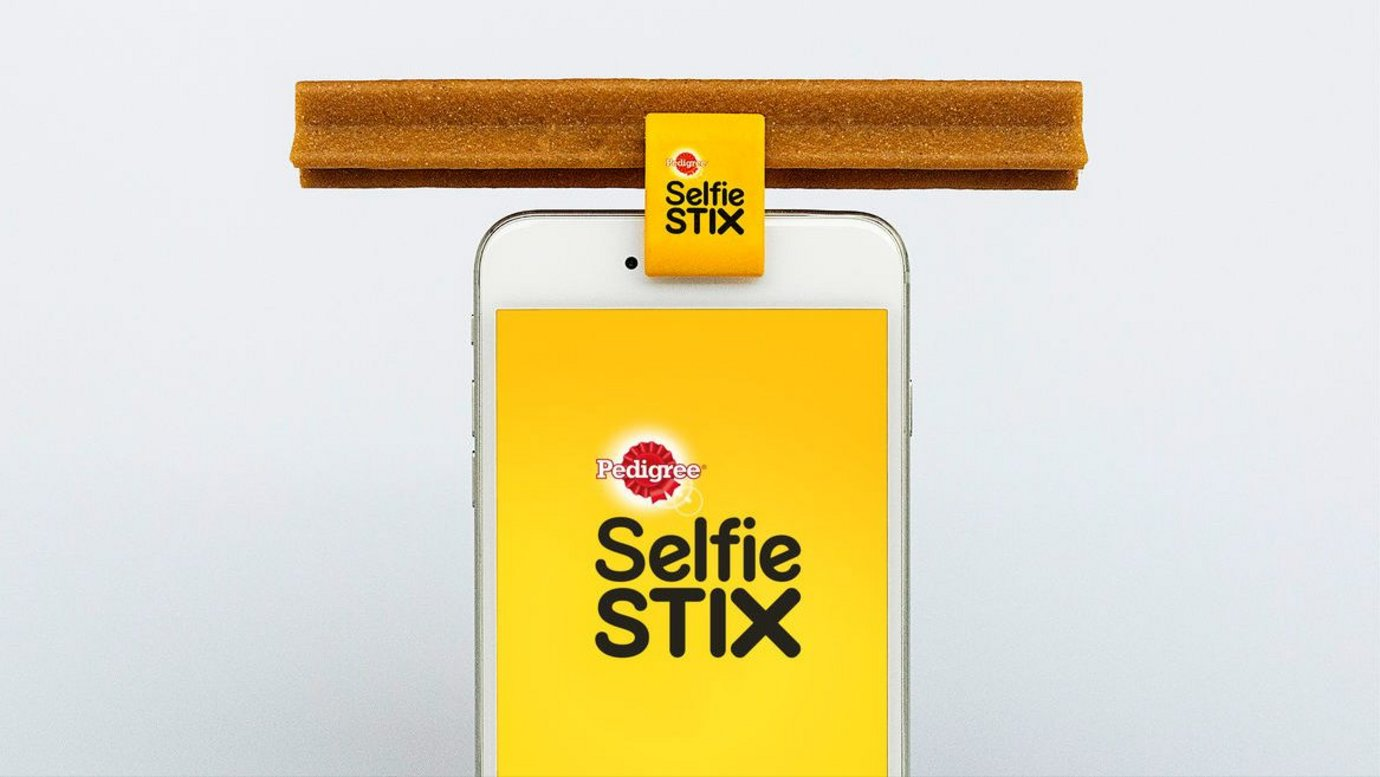 Header image for article Insight & Strategy: SelfieStix