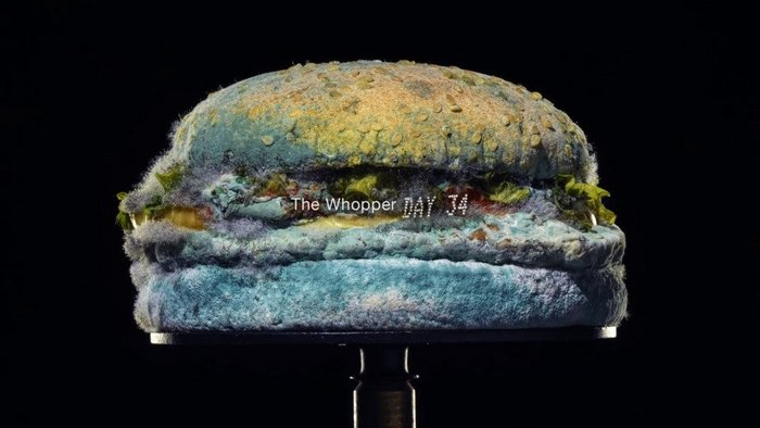 Burger King and the method behind the Moldy Whopper madness