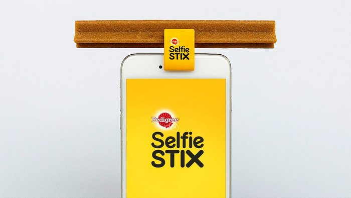 Insight & Strategy: SelfieStix