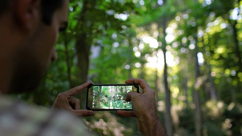 Generation Z and the environmental impact of digital